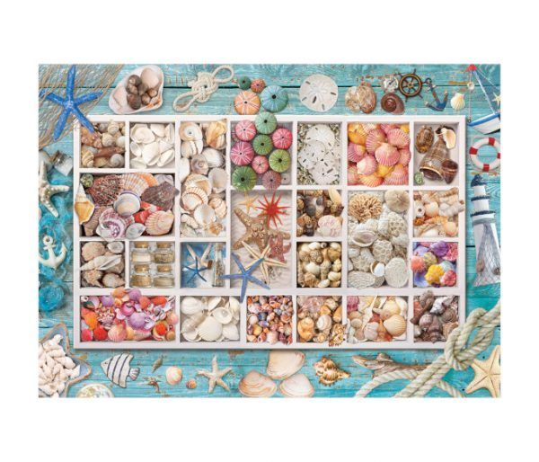 puzzle Seashell Collection