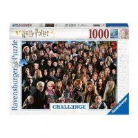 Ravensburger Harry Potter Challenge